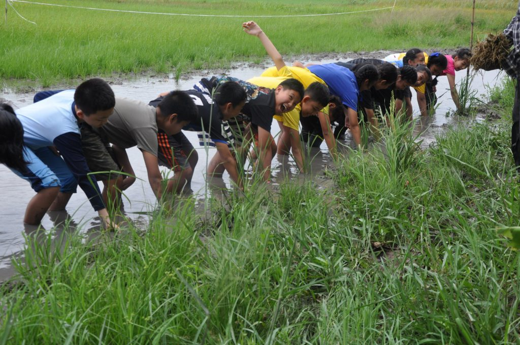 Thursday   8th of August 2019 At 07:30-16:00, 127 sixth grade students went on a  field trip at Barn Kru Thani , Pathumthani Province