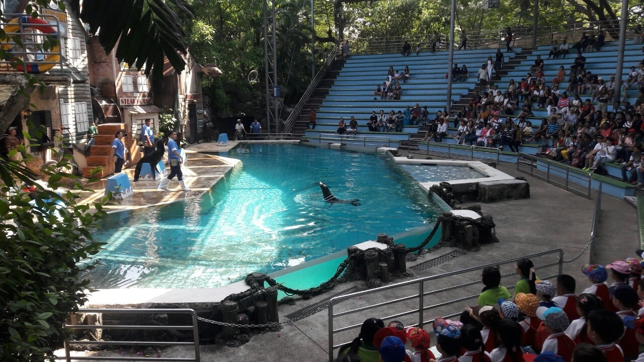 Wednesday 6th of November 2019 174 kindergarten 2 students and 19 teachers went on a field trip at Safari World Zoo, Bangkok